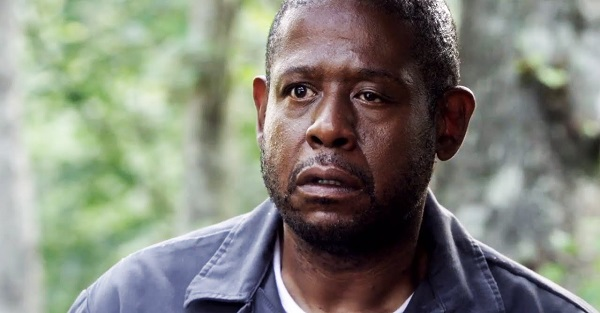 Forest Whitaker Net Worth 2019, Age, Height, Bio, Wiki