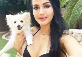 sssniperwolf Net Worth 2017, Age, Height, Bio, Wiki