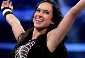 AJ Lee Net Worth 2016