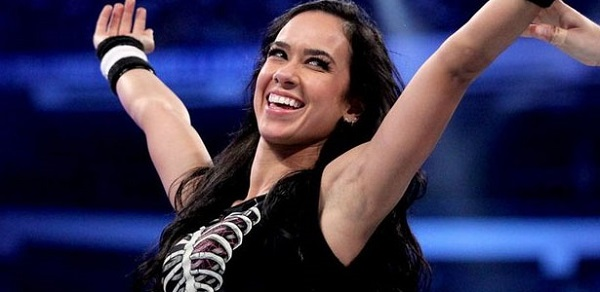 AJ Lee Net Worth 2019, Age, Height, Weight