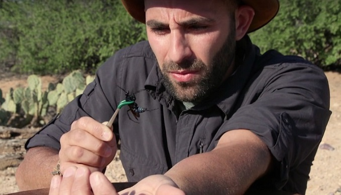Coyote Peterson Net Worth 2020, Bio, Age, Height